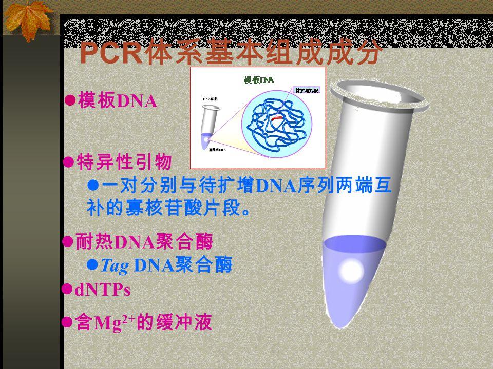 PCR 体系基本组成成分 含 Mg 2+ 的缓冲液 dNTPs 耐热 DNA 聚合酶 Tag DNA 聚合酶 特异性引物 一对分别与待扩增 DNA 序列两端互 补的寡核苷酸片段。 模板 DNA