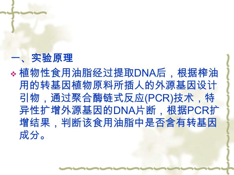 一、实验原理  植物性食用油脂经过提取 DNA 后,根据榨油 用的转基因植物原料所插人的外源基因设计 引物,通过聚合酶链式反应 (PCR) 技术,特 异性扩增外源基因的 DNA 片断,根据 PCR 扩 增结果,判断该食用油脂中是否含有转基因 成分。