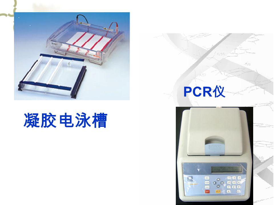 PCR 仪 凝胶电泳槽