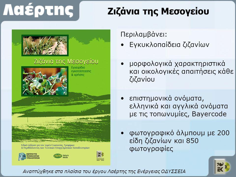 Ζιζάνια της Μεσογείου Αναπτύχθηκε στα πλαίσια του έργου Λαέρτης της Ενέργειας ΟΔΥΣΣΕΙΑ Εγκυκλοπαίδεια ζιζανίων μορφολογικά χαρακτηριστικά και οικολογι