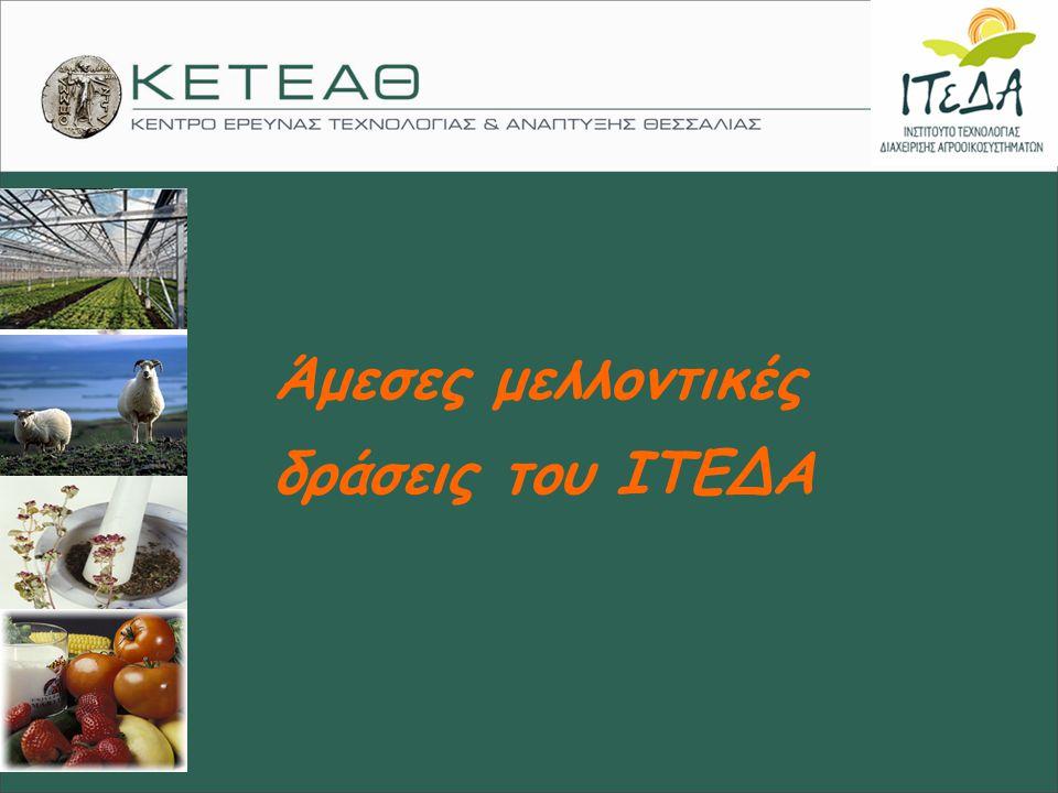Άμεσες μελλοντικές δράσεις του ΙΤΕΔΑ