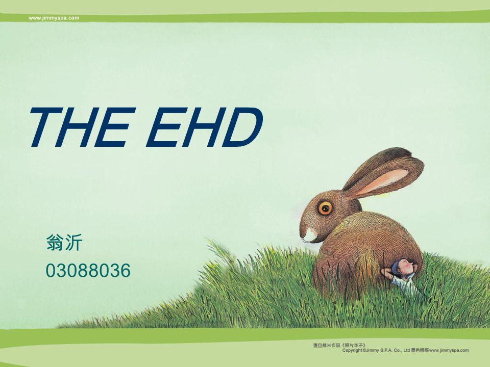 THE EHD 翁沂 03088036