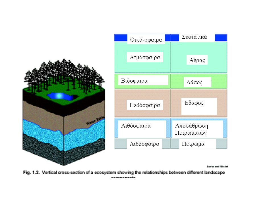 Ατμόσφαιρα Αέρας Βιόσφαιρα Δάσος Πεδόσφαιρα Έδαφος ΛιθόσφαιραΑποσάθρωση Πετρωμάτων ΛιθόσφαιραΠέτρωμα Οικό-σφαιρα Συστατικά