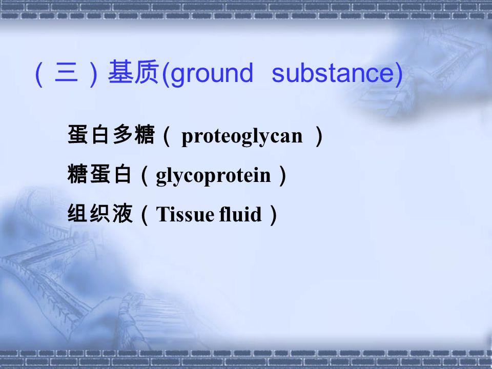 (三)基质 (ground substance) 蛋白多糖( proteoglycan ) 糖蛋白( glycoprotein ) 组织液( Tissue fluid )