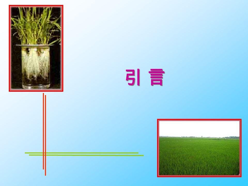 PlateI 水稻植株内形成通联的气腔(叶、叶鞘、根) 1.水稻叶鞘横切面,显示部分气腔 20×/0.40 ; 2.