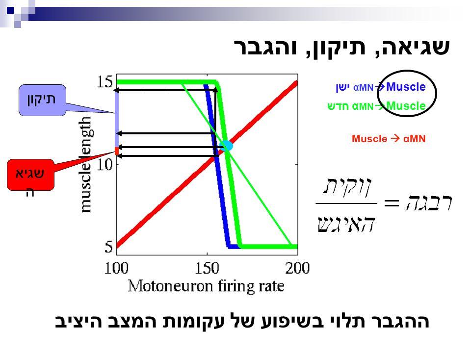 תיקון שגיא ה שגיאה, תיקון, והגבר ההגבר תלוי בשיפוע של עקומות המצב היציב αMN  Muscle ישן α MN  Muscle חדש Muscle  αMN
