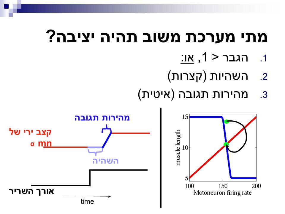 1. הגבר < 1, או: 2. השהיות (קצרות) 3. מהירות תגובה (איטית) time אורך השריר קצב ירי של mn α השהיה מהירות תגובה מתי מערכת משוב תהיה יציבה?