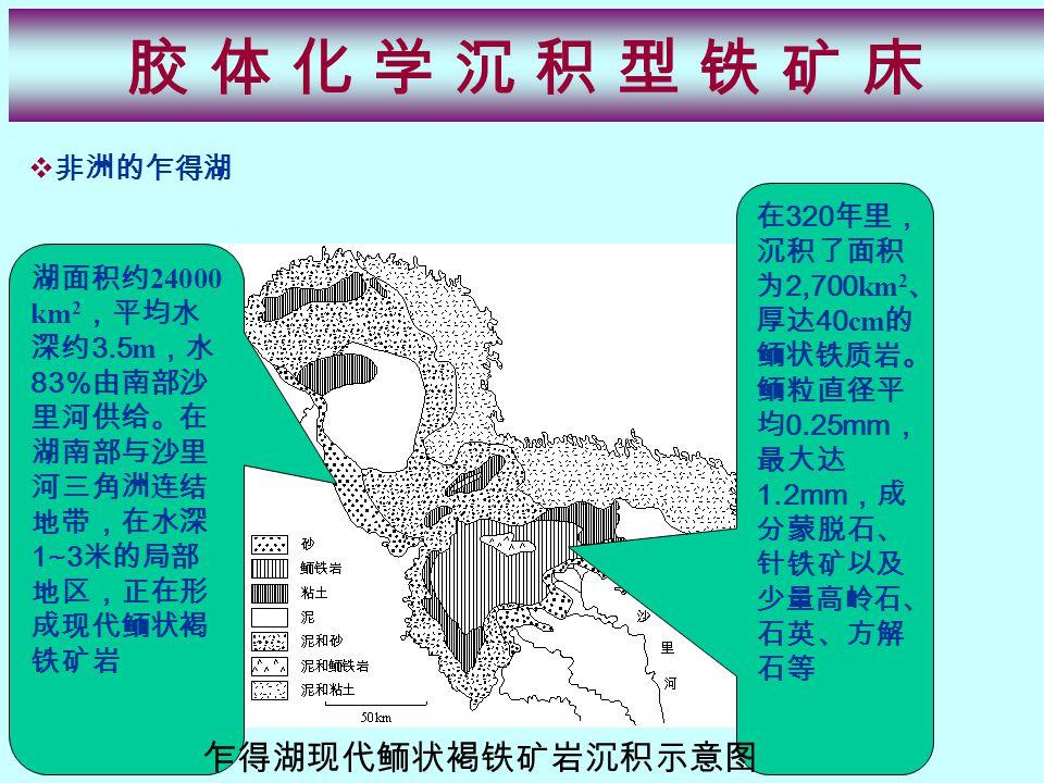 胶 体 化 学 沉 积 型 铁 矿 床胶 体 化 学 沉 积 型 铁 矿 床  非洲的乍得湖 湖面积约 24000 km 2 ,平均水 深约 3.5 m ,水 83% 由南部沙 里河供给。在 湖南部与沙里 河三角洲连结 地带,在水深 1~3 米的局部 地区,正在形 成现代鲕状褐 铁矿岩 在 320 年里, 沉积了面积 为 2,700 km 2 、 厚达 40 cm 的 鲕状铁质岩。 鲕粒直径平 均 0.25mm , 最大达 1.2mm ,成 分蒙脱石、 针铁矿以及 少量高岭石、 石英、方解 石等 乍得湖现代鲕状褐铁矿岩沉积示意图