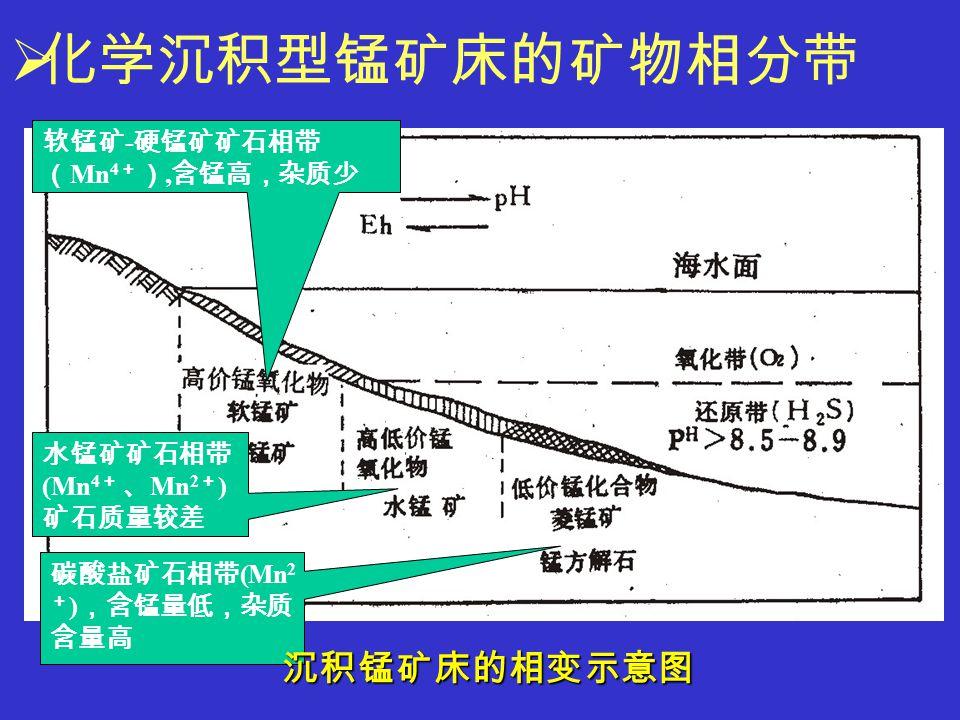  化学沉积型锰矿床的矿物相分带 软锰矿 - 硬锰矿矿石相带 ( Mn 4 + ), 含锰高,杂质少 水锰矿矿石相带 (Mn 4 + 、 Mn 2 + ) 矿石质量较差 碳酸盐矿石相带 (Mn 2 + ) ,含锰量低,杂质 含量高 沉积锰矿床的相变示意图