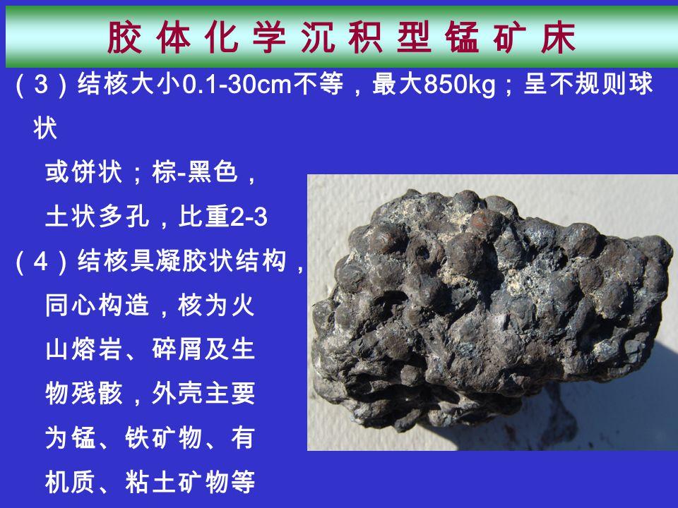 ( 3 )结核大小 0.1-30cm 不等,最大 850kg ;呈不规则球 状 或饼状;棕 - 黑色, 土状多孔,比重 2-3 ( 4 )结核具凝胶状结构, 同心构造,核为火 山熔岩、碎屑及生 物残骸,外壳主要 为锰、铁矿物、有 机质、粘土矿物等 胶 体 化 学 沉 积 型 锰 矿 床胶 体 化 学 沉 积 型 锰 矿 床