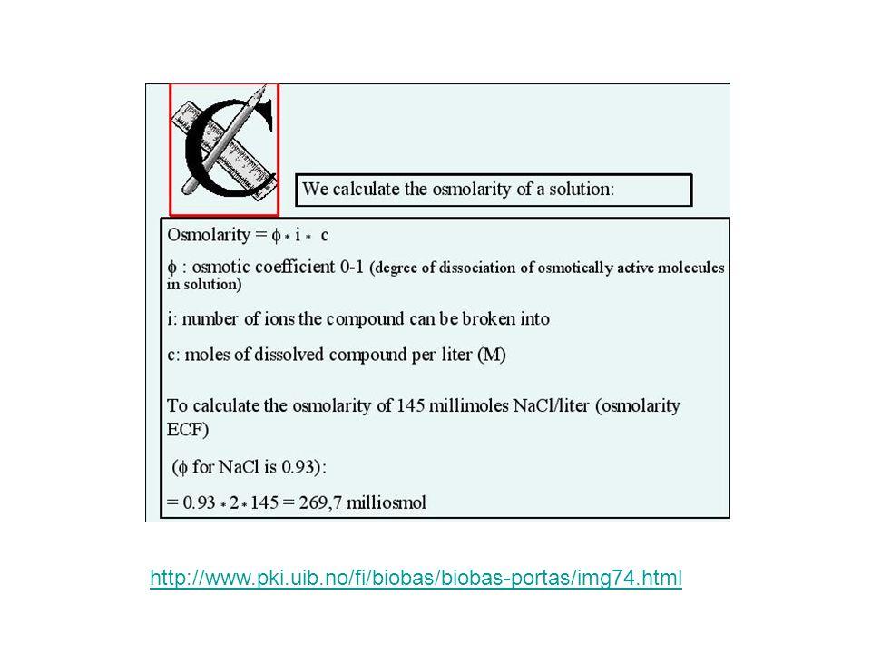 http://www.pki.uib.no/fi/biobas/biobas-portas/img74.html