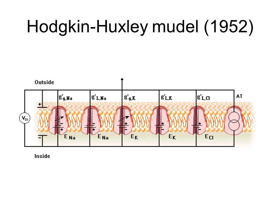 Hodgkin-Huxley mudel (1952)