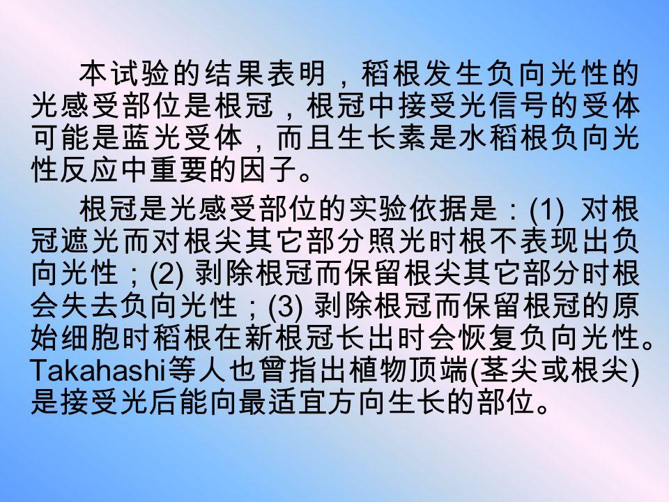 本试验的结果表明,稻根发生负向光性的 光感受部位是根冠,根冠中接受光信号的受体 可能是蓝光受体,而且生长素是水稻根负向光 性反应中重要的因子。 根冠是光感受部位的实验依据是: (1) 对根 冠遮光而对根尖其它部分照光时根不表现出负 向光性; (2) 剥除根冠而保留根尖其它部分时根 会失去负向光性;