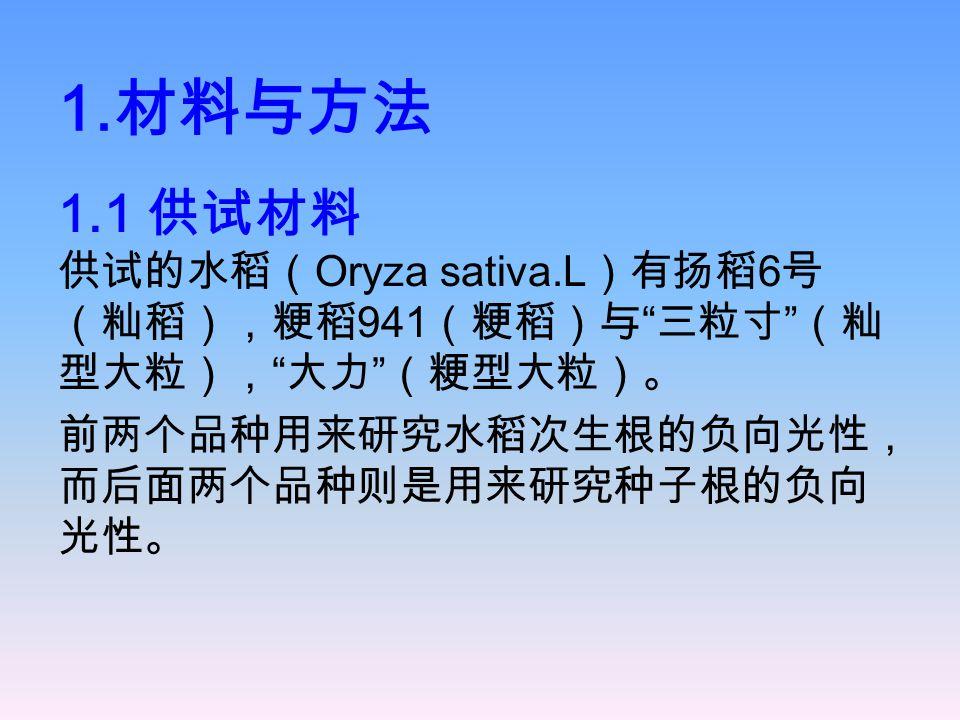 """1. 材料与方法 1.1 供试材料 供试的水稻( Oryza sativa.L )有扬稻 6 号 (籼稻),粳稻 941 (粳稻)与 """" 三粒寸 """" (籼 型大粒), """" 大力 """" (粳型大粒)。 前两个品种用来研究水稻次生根的负向光性, 而后面两个品种则是用来研究种子根的负向 光性。"""