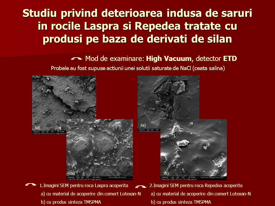 Studiu privind deterioarea indusa de saruri in rocile Laspra si Repedea tratate cu produsi pe baza de derivati de silan Probele au fost supuse actiuni