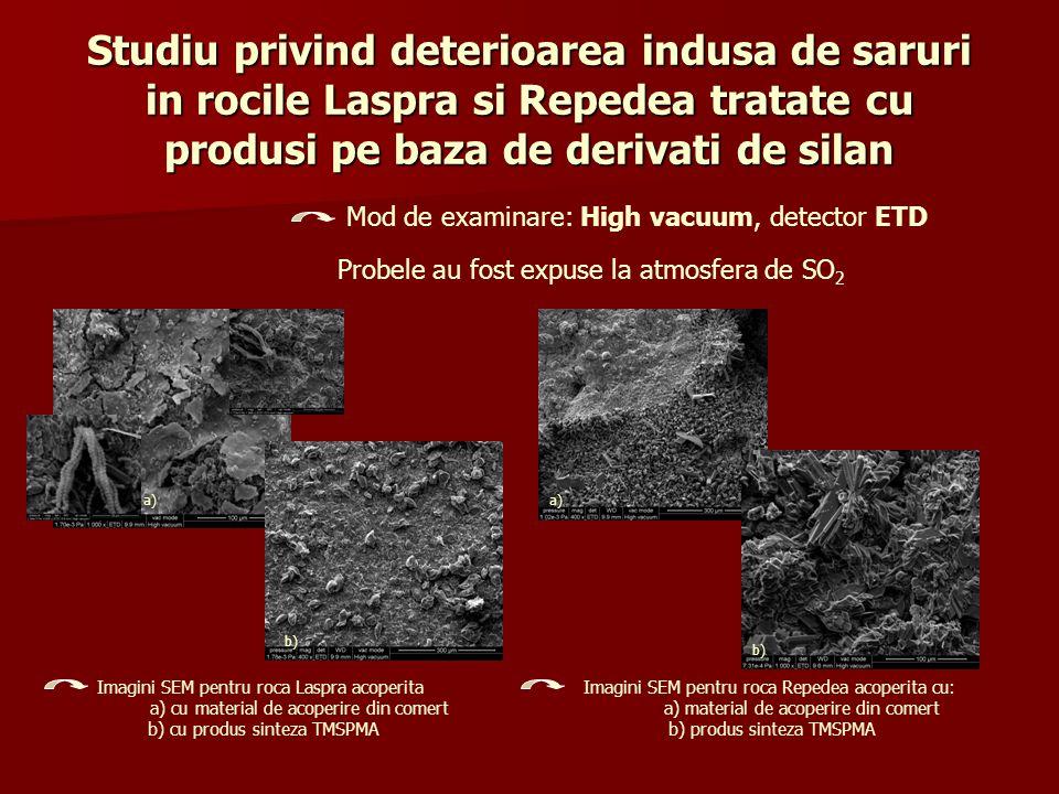 Studiu privind deterioarea indusa de saruri in rocile Laspra si Repedea tratate cu produsi pe baza de derivati de silan Mod de examinare: High vacuum,