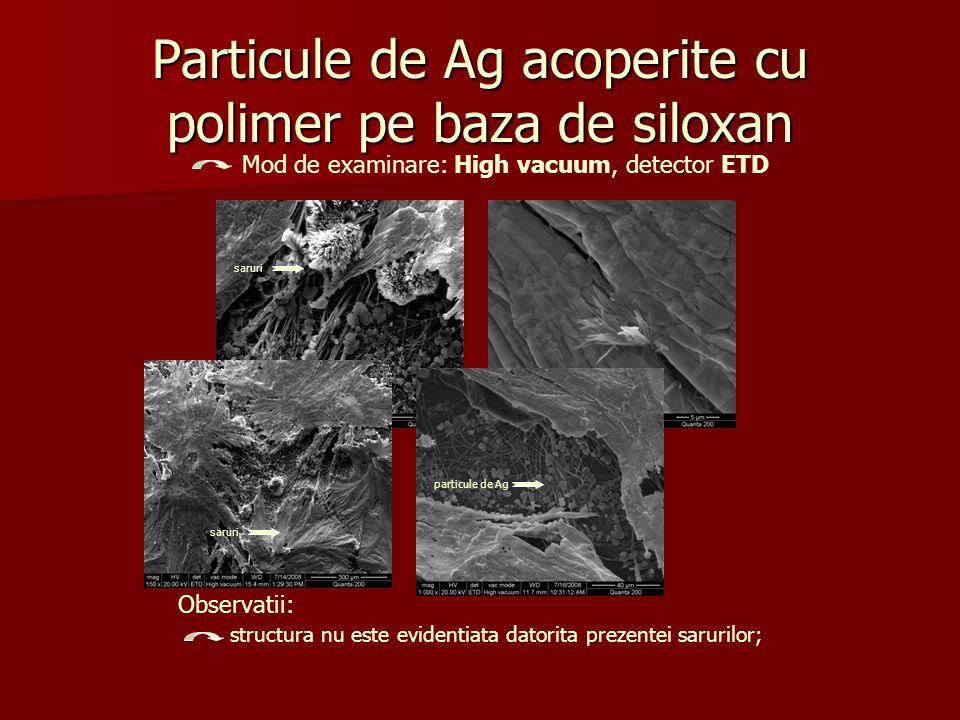 Particule de Ag acoperite cu polimer pe baza de siloxan Mod de examinare: High vacuum, detector ETD Observatii: structura nu este evidentiata datorita