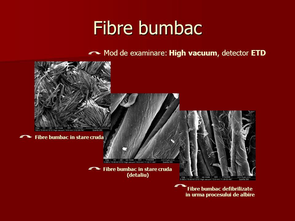 Fibre bumbac Mod de examinare: High vacuum, detector ETD Fibre bumbac in stare cruda Fibre bumbac in stare cruda (detaliu) Fibre bumbac defibrilizate