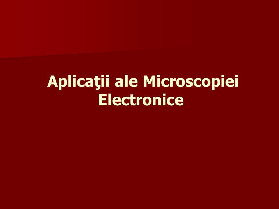 Aplicaţii ale Microscopiei Electronice