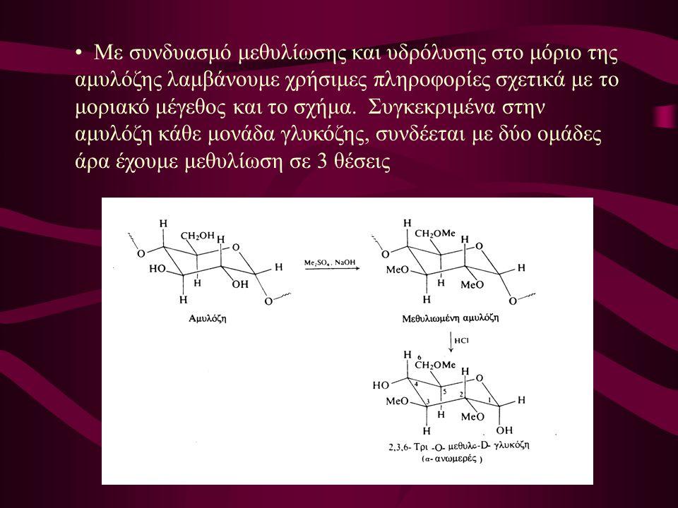 Με συνδυασμό μεθυλίωσης και υδρόλυσης στο μόριο της αμυλόζης λαμβάνουμε χρήσιμες πληροφορίες σχετικά με το μοριακό μέγεθος και το σχήμα. Συγκεκριμένα