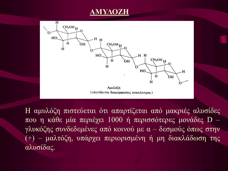 ΑΜΥΛΟΖΗ Η αμυλόζη πιστεύεται ότι απαρτίζεται από μακριές αλυσίδες που η κάθε μία περιέχει 1000 ή περισσότερες μονάδες D – γλυκόζης συνδεδεμένες από κο