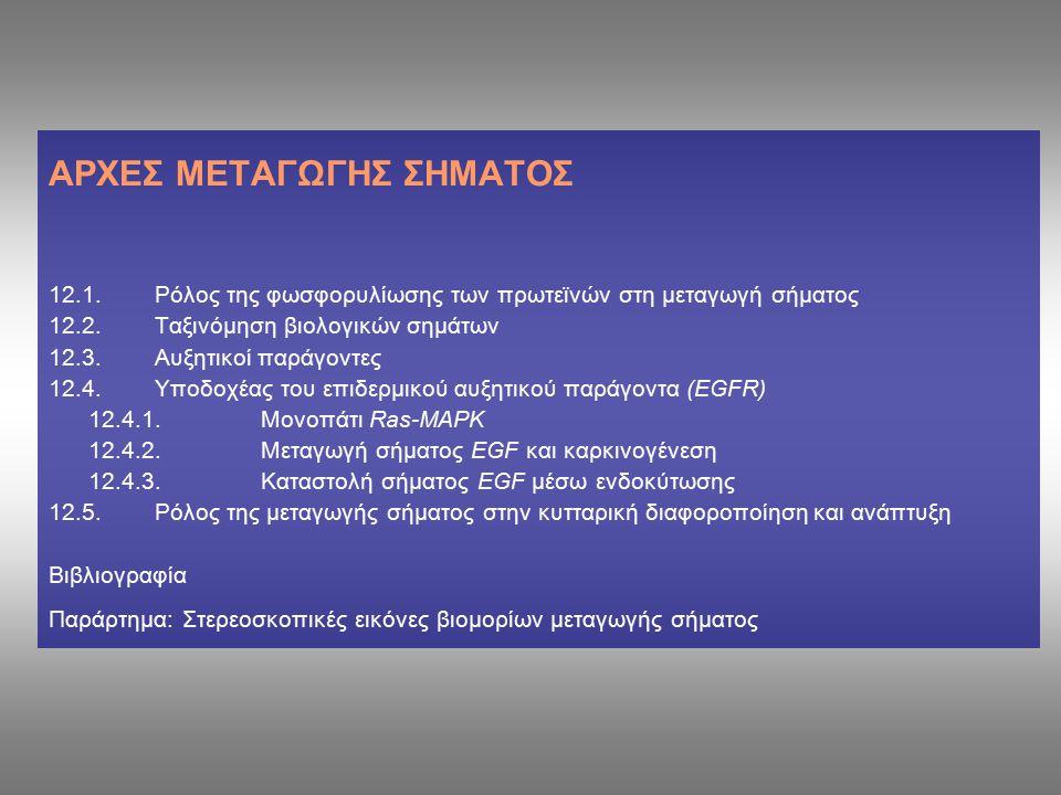 ΑΡΧΕΣ ΜΕΤΑΓΩΓΗΣ ΣΗΜΑΤΟΣ 12.1.Ρόλος της φωσφορυλίωσης των πρωτεϊνών στη μεταγωγή σήματος 12.2.Tαξινόμηση βιολογικών σημάτων 12.3.Αυξητικοί παράγοντες 12.4.Υποδοχέας του επιδερμικού αυξητικού παράγοντα (EGFR) 12.4.1.Μονοπάτι Ras-MAPK 12.4.2.Μεταγωγή σήματος EGF και καρκινογένεση 12.4.3.Καταστολή σήματος EGF μέσω ενδοκύτωσης 12.5.Ρόλος της μεταγωγής σήματος στην κυτταρική διαφοροποίηση και ανάπτυξη Βιβλιογραφία Παράρτημα: Στερεοσκοπικές εικόνες βιομορίων μεταγωγής σήματος