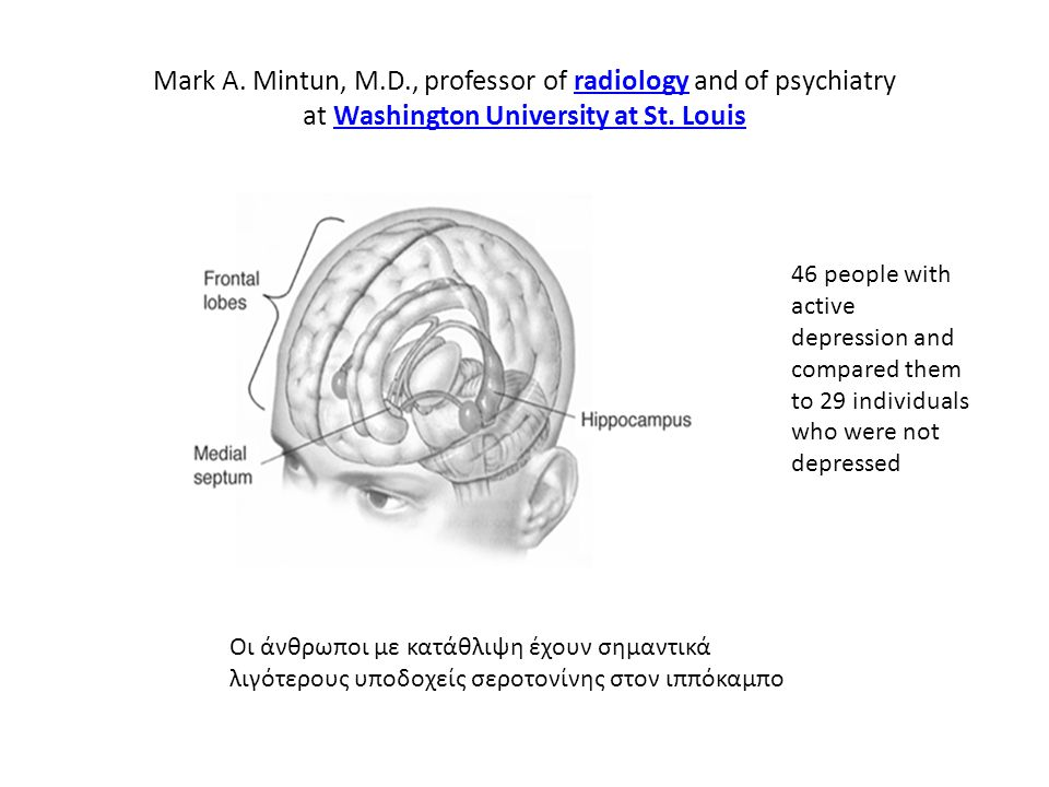 Mark A. Mintun, M.D., professor of radiology and of psychiatry at Washington University at St. LouisradiologyWashington University at St. Louis Οι άνθ