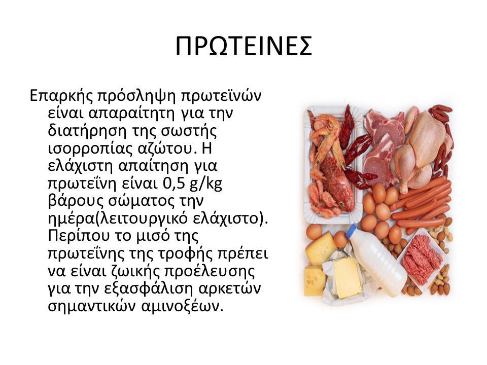 ΠΡΩΤΕΙΝΕΣ Επαρκής πρόσληψη πρωτεϊνών είναι απαραίτητη για την διατήρηση της σωστής ισορροπίας αζώτου. Η ελάχιστη απαίτηση για πρωτεΐνη είναι 0,5 g/kg