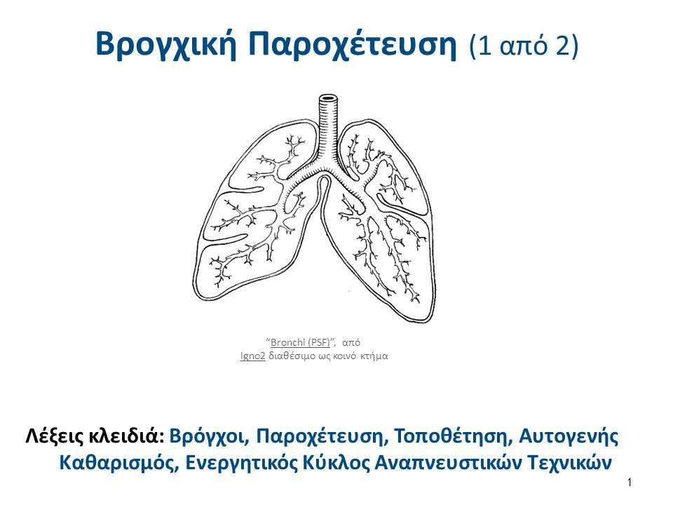 """Βρογχική Παροχέτευση (1 από 2) 1 Λέξεις κλειδιά: Βρόγχοι, Παροχέτευση, Τοποθέτηση, Αυτογενής Καθαρισμός, Ενεργητικός Κύκλος Αναπνευστικών Τεχνικών """"Br"""