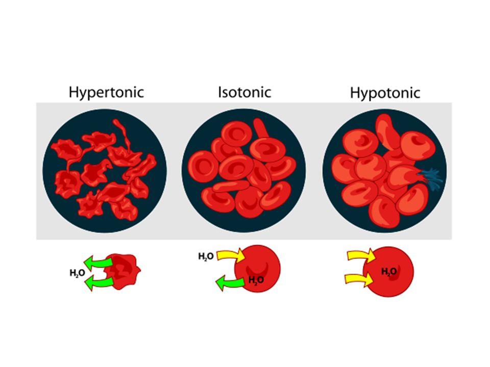 Κινητοί μεταφορείς (Mobile carriers)Κινητοί μεταφορείς (Mobile carriers) - Ιονοφόρα (Βαλινομυκίνη, Δινιτροφαινόλη κλπ) Πρωτεϊνικοί μετατοπιστές (Protein-translocators)Πρωτεϊνικοί μετατοπιστές (Protein-translocators) (Band 3, πορίνες, μεταφορέας γλυκόζης στα ερυθροκύτταρα) Δίαυλοι ή πόροι (Channels)Δίαυλοι ή πόροι (Channels) - - Ιονοφόρα που σχηματίζουν διαύλους (Γραμισιδίνη) - - Δίαυλοι δυναμικού [Voltage-gated channels (Δίαυλοι ιόντων Na + -, K + - και Ca 2+ ) - -Δίαυλοι που ενεργοποιούνται από προσδέτη (Ligand-gated channels) - -Μηχανο-ευαίσθητοι δίαυλοι Τα ιονοφόρα (αντιβιοτικά μικροοργανισμών) καταστρέφουν τις διαβαθμίσεις συγκεντρώσεων απαραίτητες για κυτταρικές λειτουργίες και επομένως δρουν ως δηλητήρια.
