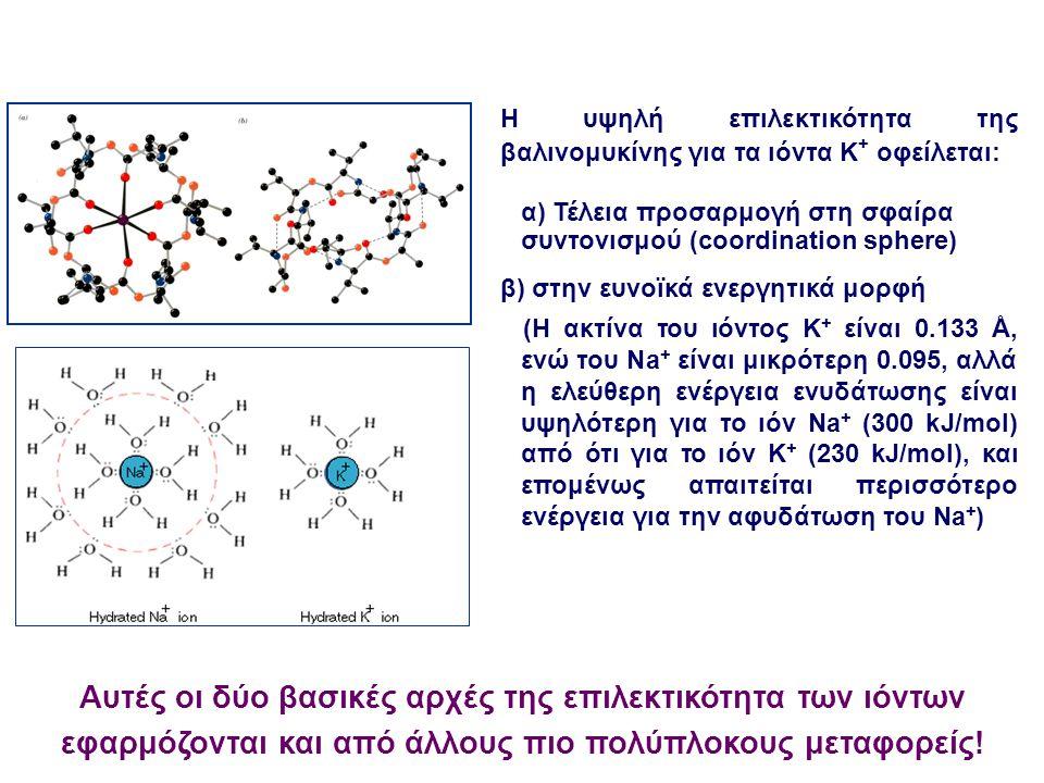 Η υψηλή επιλεκτικότητα της βαλινομυκίνης για τα ιόντα K + οφείλεται: α) Τέλεια προσαρμογή στη σφαίρα συντονισμού (coordination sphere) β) στην ευνοϊκά