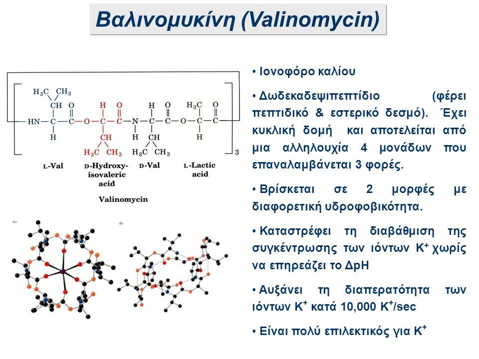 Βαλινομυκίνη (Valinomycin) Ιονοφόρο καλίου Δωδεκαδεψιπεπτίδιο (φέρει πεπτιδικό & εστερικό δεσμό). Έχει κυκλική δομή και αποτελείται από μια αλληλουχία