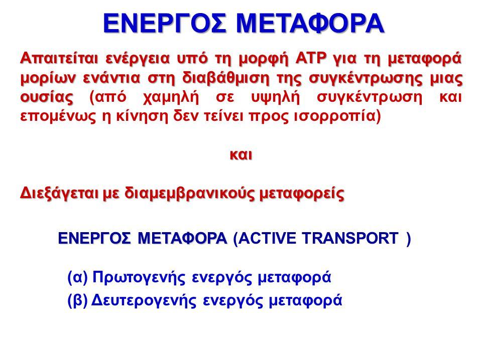 Απαιτείται ενέργεια υπό τη μορφή ATP για τη μεταφορά μορίων ενάντια στη διαβάθμιση της συγκέντρωσης μιας ουσίας Απαιτείται ενέργεια υπό τη μορφή ATP γ