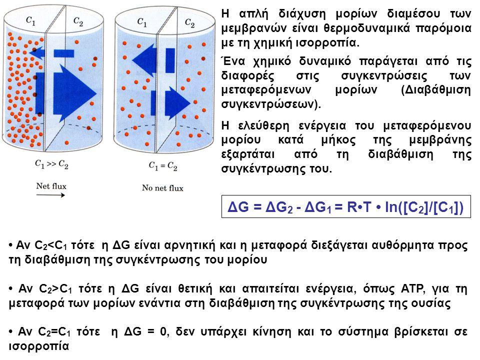 Αν C 2 <C 1 τότε η ΔG είναι αρνητική και η μεταφορά διεξάγεται αυθόρμητα προς τη διαβάθμιση της συγκέντρωσης του μορίου Αν C 2 >C 1 τότε η ΔG είναι θε