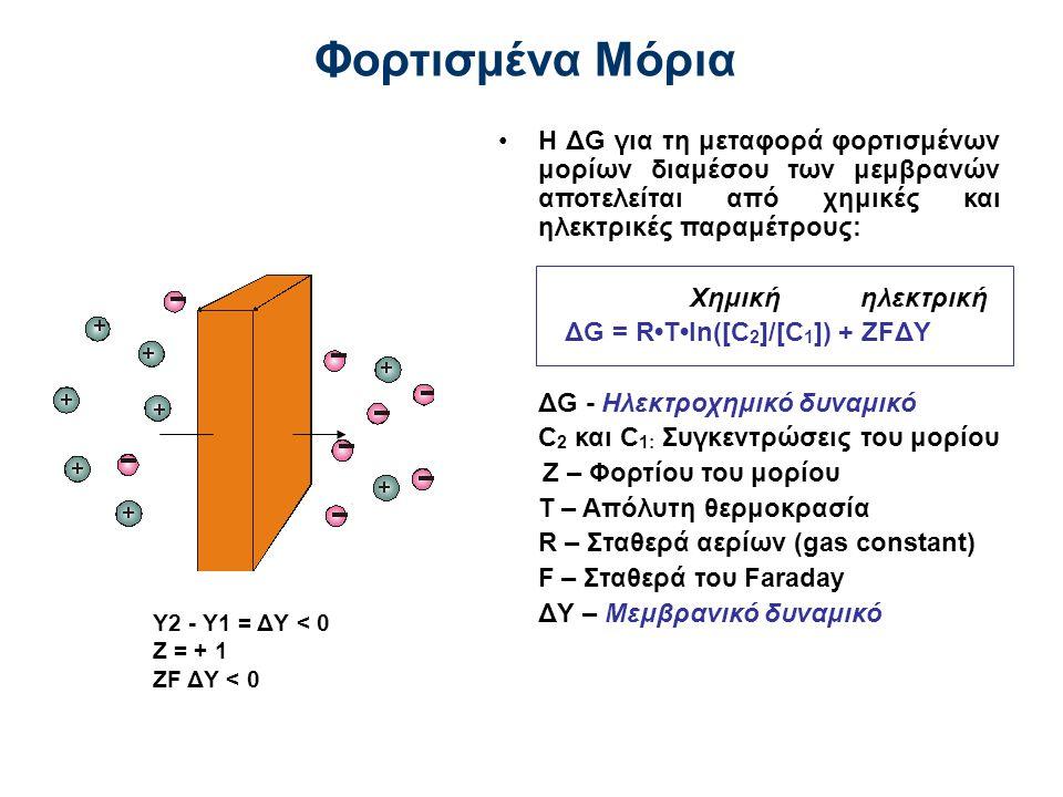 Η ΔG για τη μεταφορά φορτισμένων μορίων διαμέσου των μεμβρανών αποτελείται από χημικές και ηλεκτρικές παραμέτρους: Χημική ηλεκτρική ΔG = RTln([C 2 ]/[