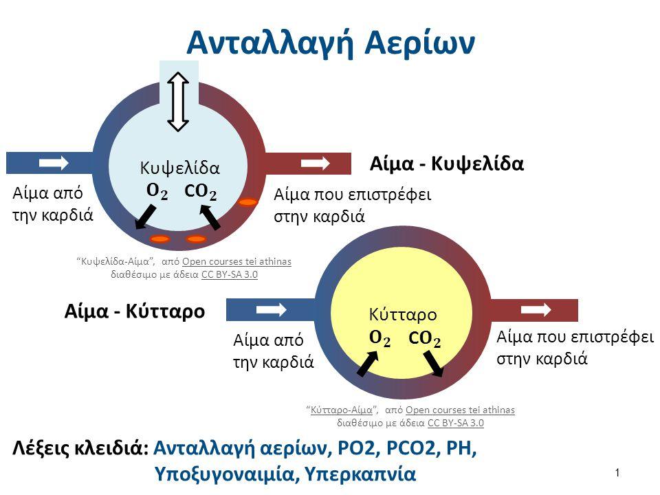 Αρτηριακή Υποξυγοναιμία Ελάττωση PaO2 σε επίπεδα χαμηλότερα των φυσ/κών με SaO2 < 90% Αίτια Ελάττωση βαρομετρικής πίεσης Υποαερισμός Διαταραχή της διάχυσης του O2 Διαταραχή της σχέσης Αερισμού – Αιμάτωσης (V/Q) Παράκαμψη αίματος εκ δεξιών προς τα αριστερά (Shunt) Κλινικοί Χαρακτηρισμοί Αναπνευστική Ανεπάρκεια Τύπου Ι (υποξαιμία) Αναπνευστική Ανεπάρκεια Τύπου ΙΙ (υποξαιμία & υπερκαπνία) (McArdle, Katch & Katch, 2001; West, 1999; Mangat, 1993; Morgan, 1996) 12