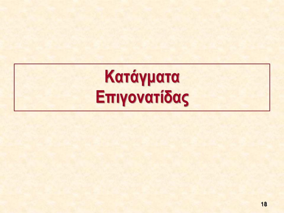 18 ΚατάγματαΕπιγονατίδας