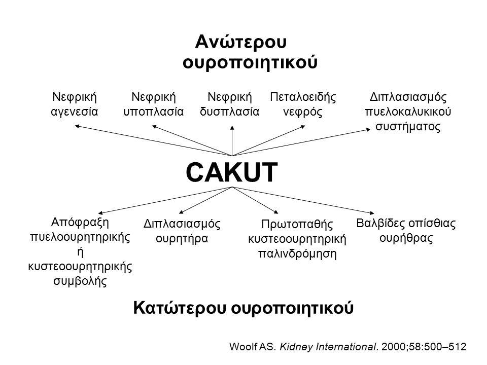 CAKUT Ανώτερου ουροποιητικού Κατώτερου ουροποιητικού Νεφρική αγενεσία Νεφρική υποπλασία Νεφρική δυσπλασία Πεταλοειδής νεφρός Διπλασιασμός πυελοκαλυκικ