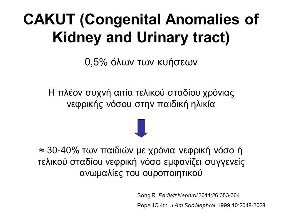 CAKUT (Congenital Anomalies of Kidney and Urinary tract) 0,5% όλων των κυήσεων Η πλέον συχνή αιτία τελικού σταδίου χρόνιας νεφρικής νόσου στην παιδική