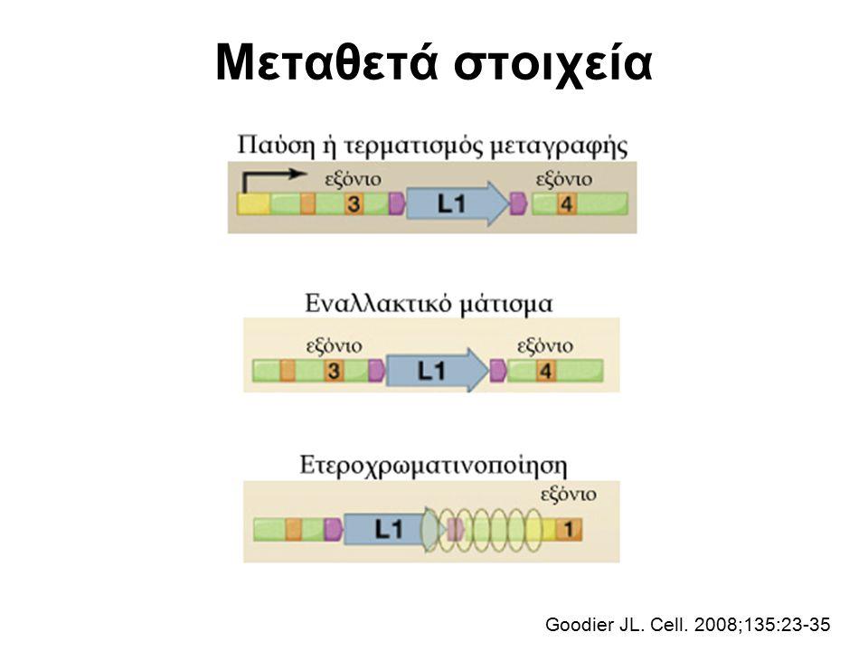 Μεταθετά στοιχεία Goodier JL. Cell. 2008;135:23-35