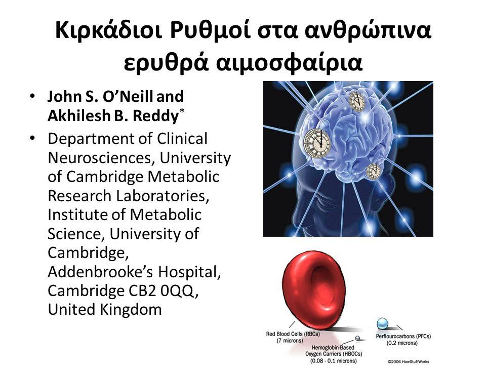 Κιρκάδιοι Ρυθμοί στα ανθρώπινα ερυθρά αιμοσφαίρια John S. O'Neill and Akhilesh B. Reddy * Department of Clinical Neurosciences, University of Cambridg
