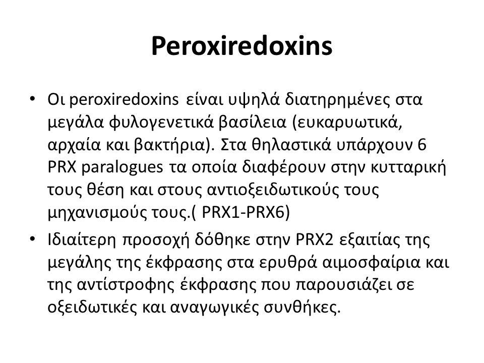 Peroxiredoxins Οι peroxiredoxins είναι υψηλά διατηρημένες στα μεγάλα φυλογενετικά βασίλεια (ευκαρυωτικά, αρχαία και βακτήρια). Στα θηλαστικά υπάρχουν