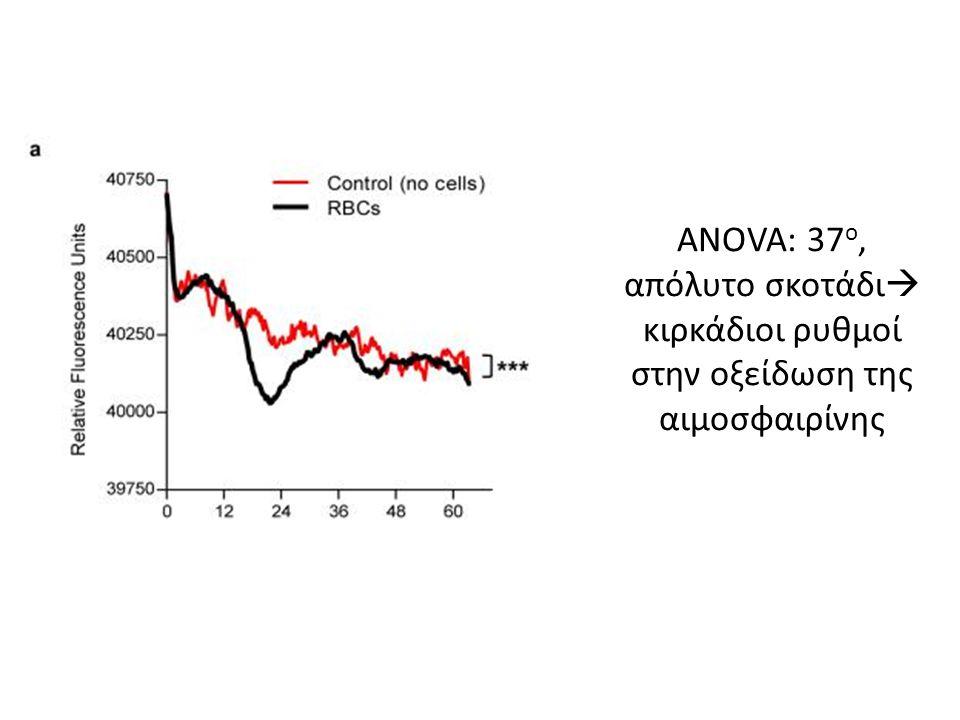 ANOVA: 37 ο, απόλυτο σκοτάδι  κιρκάδιοι ρυθμοί στην οξείδωση της αιμοσφαιρίνης