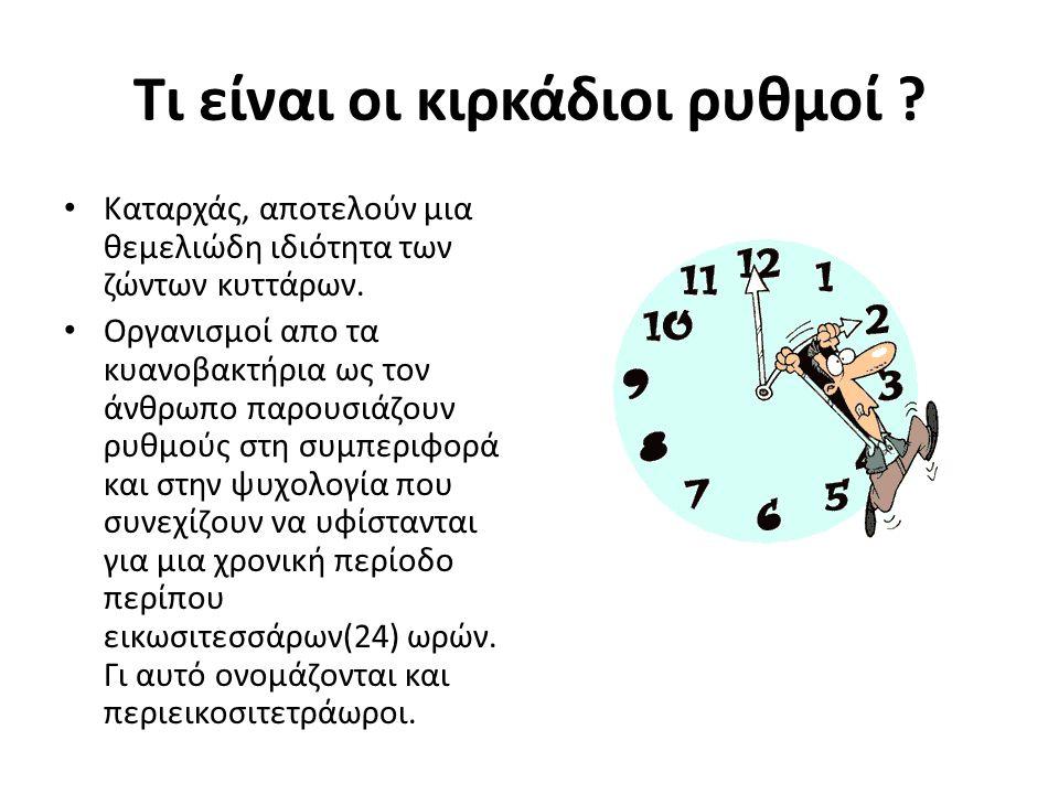 Χαρακτηριστικά των κιρκάδιων ρυθμών Οι ρυθμοί αυτοί καθοδηγούνται από βιολογικά ρολόγια με 2 βασικά χαρακτηριστικά: – Πρώτον, η χρονική αυτή περίοδος των 24 ωρών δεν επηρεάζεται από τη θερμοκρασία.