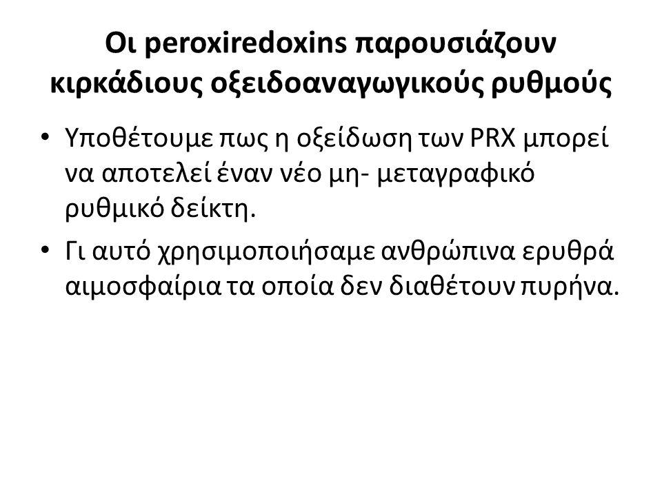 Οι peroxiredoxins παρουσιάζουν κιρκάδιους οξειδοαναγωγικούς ρυθμούς Υποθέτουμε πως η οξείδωση των PRX μπορεί να αποτελεί έναν νέο μη- μεταγραφικό ρυθμ