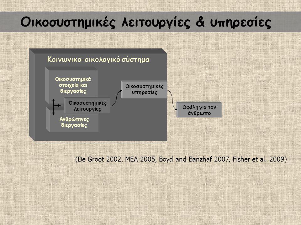 Οικολογικό σύστημα Οικοσυστημικές υπηρεσίες Οφέλη για τον άνθρωπο Οικοσυστημικά στοιχεία και διεργασίες Ανθρώπινες διεργασίες Οικοσυστημικές λειτουργί