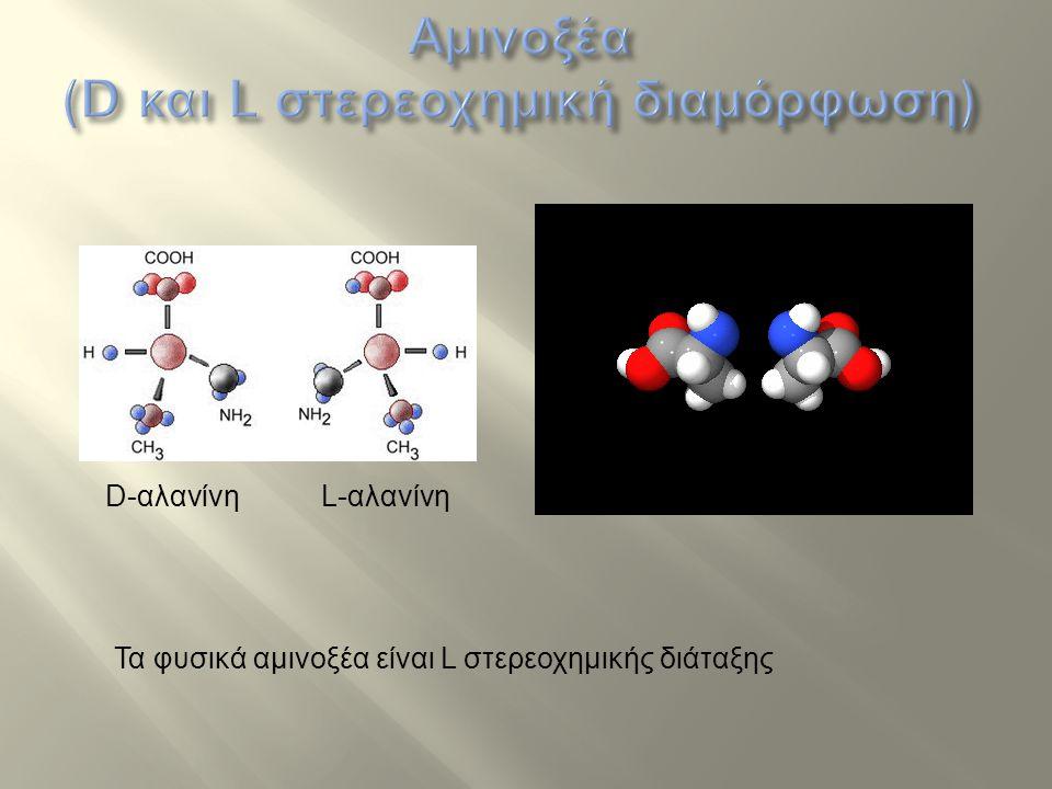 L-αλανίνη Τα φυσικά αμινοξέα είναι L στερεοχημικής διάταξης D-αλανίνη