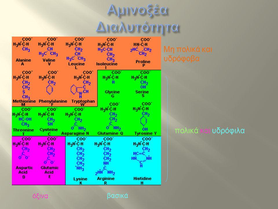 pH > pKα της καρβοξυλικής ομάδας (pKα ~ 2,2)  -COO - pH < pKα της αμινομάδας (pKα ~ 9,4)  -ΝΗ 3 + 2,2 < pH < 9,4  διπολικό ιόν ή εσωτερικό άλας (zwitterion) pH < 2,2  -ΝΗ 3 + pH > 9,4  -COO- Άρα…