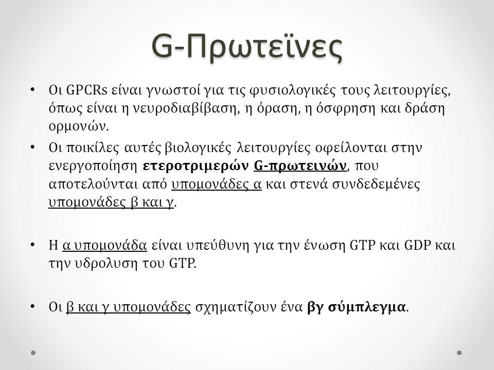 G-Πρωτεϊνες Οι GPCRs είναι γνωστοί για τις φυσιολογικές τους λειτουργίες, όπως είναι η νευροδιαβίβαση, η όραση, η όσφρηση και δράση ορμονών.