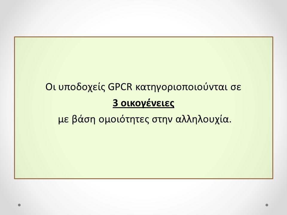 Οι υποδοχείς GPCR κατηγοριοποιούνται σε 3 οικογένειες με βάση ομοιότητες στην αλληλουχία.